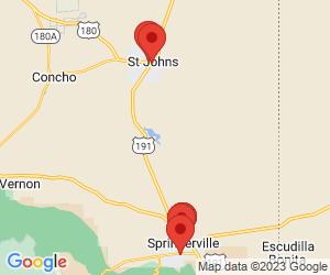 County & Parish Government near 85925
