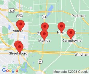 Pizza near Mantua, OH