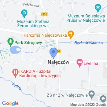 Nałęczowskie Stowarzyszenie Rozwoju i Promocji map.on