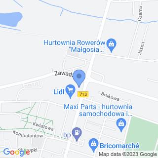 Tomaszowskie Stowarzyszenie Amazonek na mapie