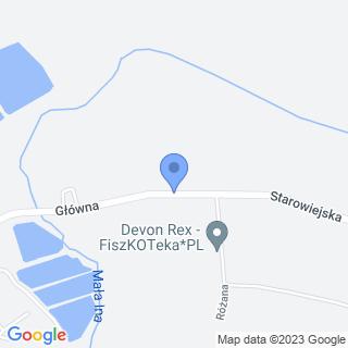 NZOZ pod Lwem na mapie