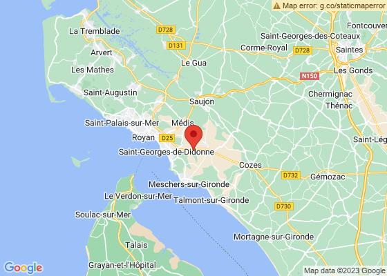Carte google map