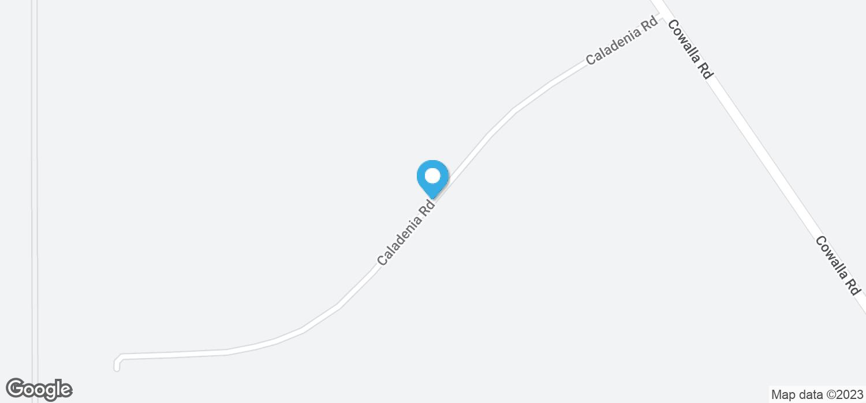 64 Caladenia Road, Wanerie