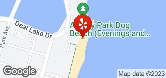 Th Ave Dog Beach Asbury Park Nj