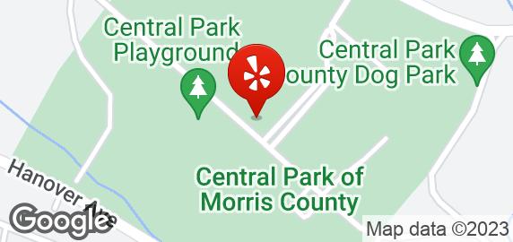 Central Park County Dog Park Morris Plains Nj