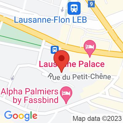 Tesla destination charger - Lausanne Palace