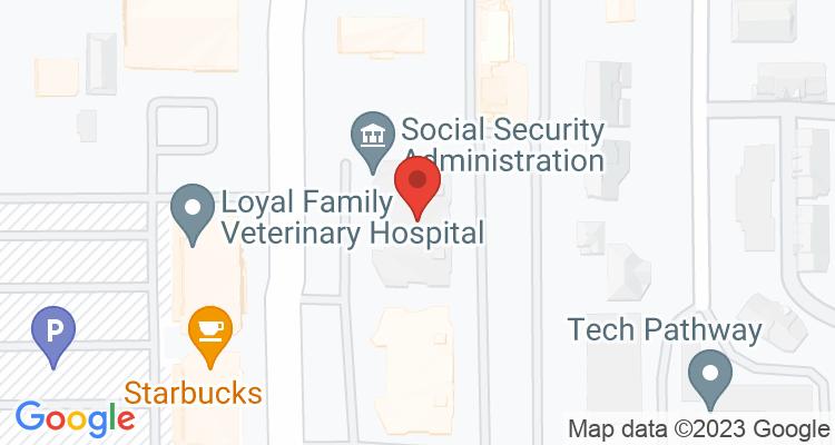 Bellevue, WA Social Security Office Map