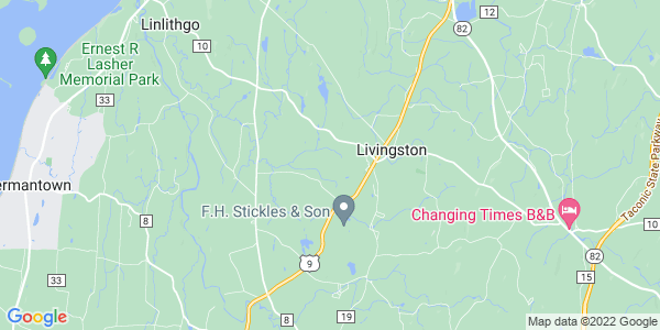 Map of Livingston, NY