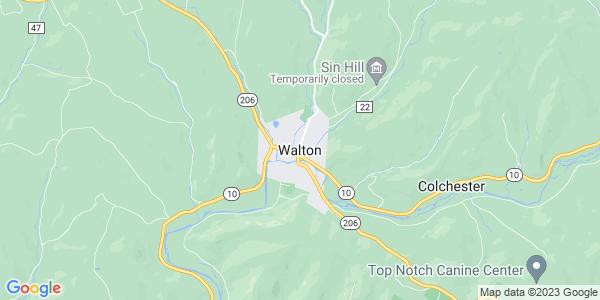 Map of Walton, NY