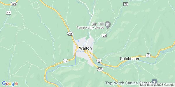 Map of Walton Town, NY
