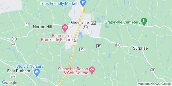 Map of Greenville, NY