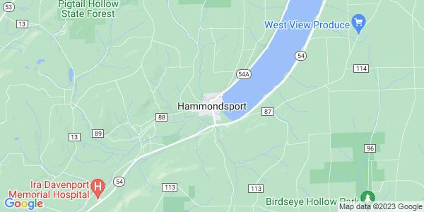 Map of Hammondsport, NY