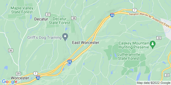 Map of East Worcester, NY