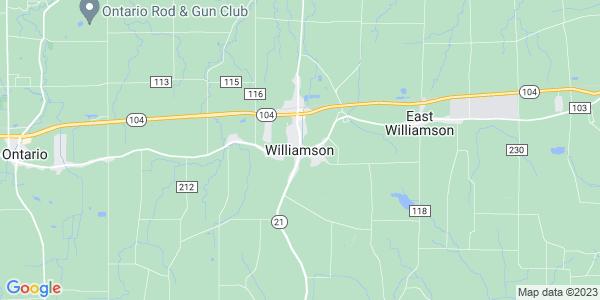 Map of Williamson CDP, NY