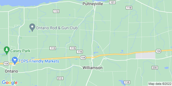 Map of Williamson, NY