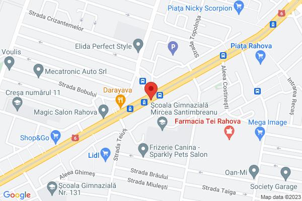 Rahova - Teius Map