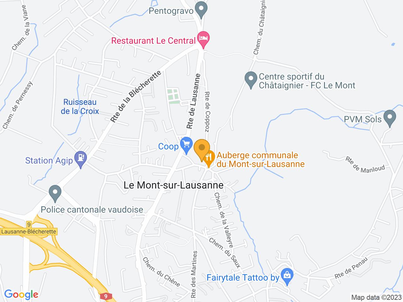 Rue du Petit-Mont 2, 1052 Le Mont-sur-Lausanne