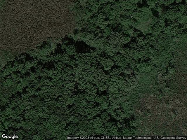 2925 Willowood Farm Road Medina, MN 55340 Satellite View