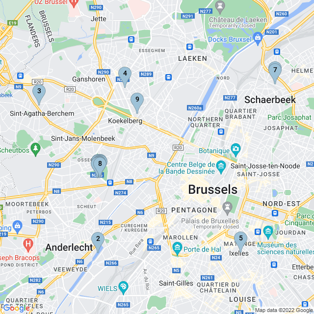 pet-sitter--molenbeek-saint-jean--bru