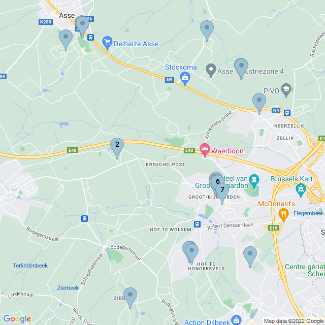 pet-sitter--dilbeek--vbr