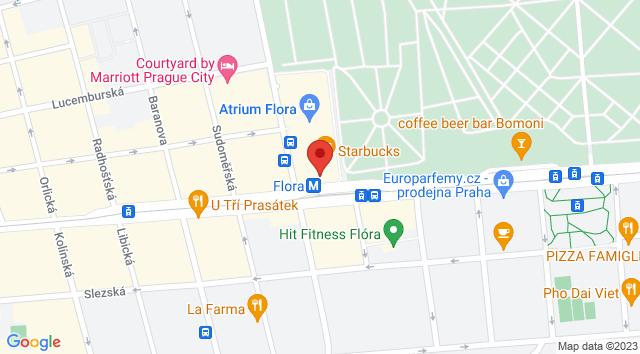 Vinohradská 2828/151, 130 00 Praha 3-Žižkov, Česko