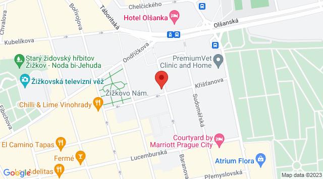 Baranova 674/27, Žižkov, 130 00 Praha-Praha 3, Česko