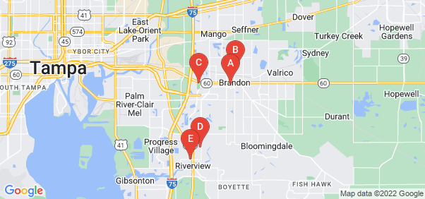 Google static map for Hillsborough County
