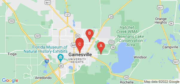 Google static map for Gainesville