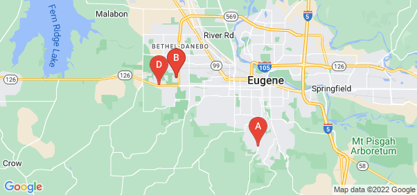 Google static map for Eugene