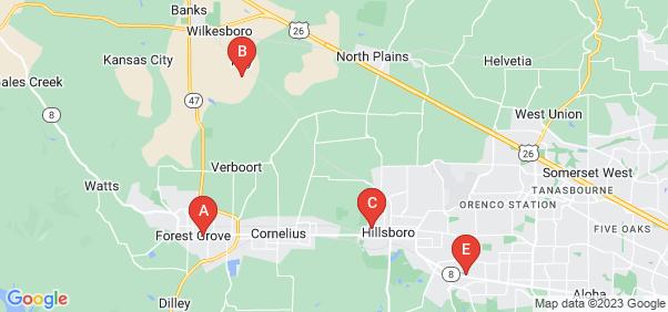 Google static map for Washington County