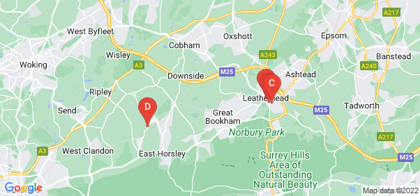 Google static map for Leatherhead