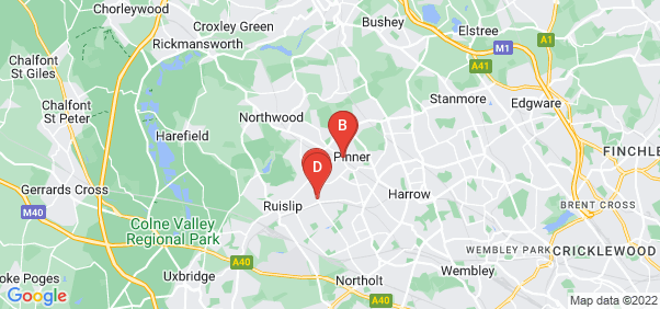 Google static map for Pinner