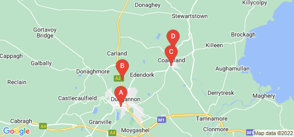 Google static map for Dungannon