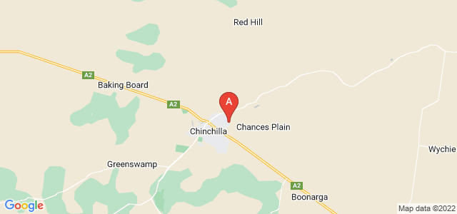 Google static map for Chinchilla