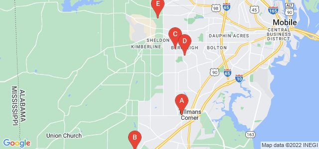 Google static map for Mobile County