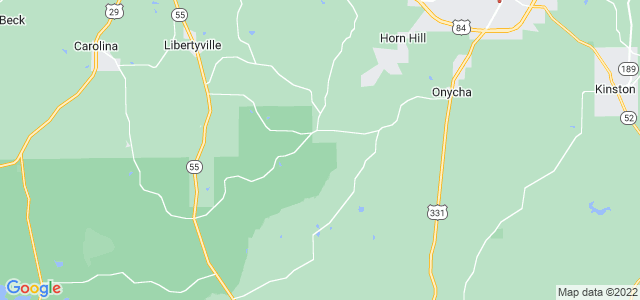 Google static map for Covington County