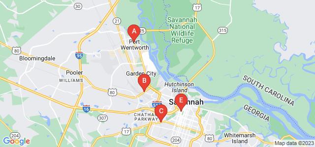 Google static map for Savannah