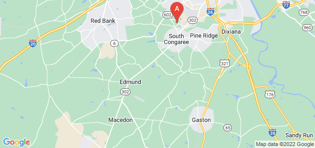 Google static map for South Carolina