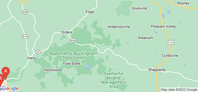 Google static map for Virginia