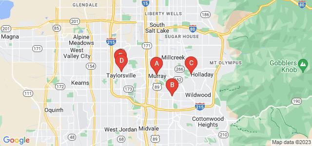 Google static map for Salt Lake County