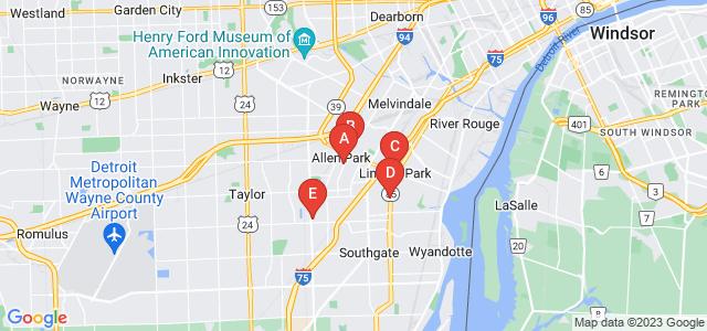 Google static map for Wayne County