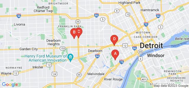 Google static map for Detroit