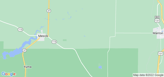 Google static map for Michigan