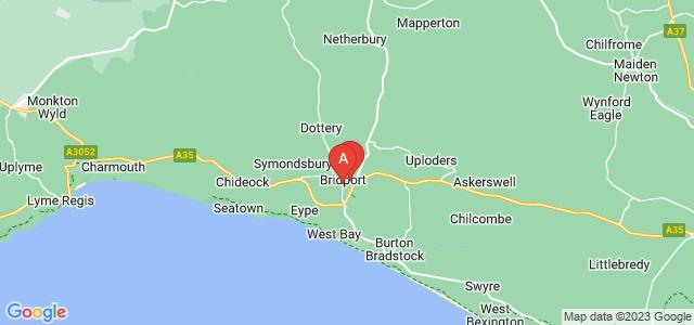 Google static map for Bridport