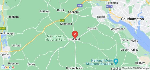 Google static map for Lyndhurst