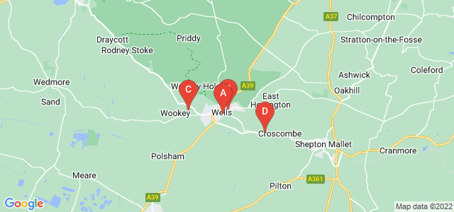 Google static map for Wells