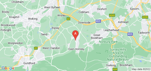 Google static map for Horsley