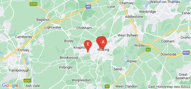 Google static map for Surrey