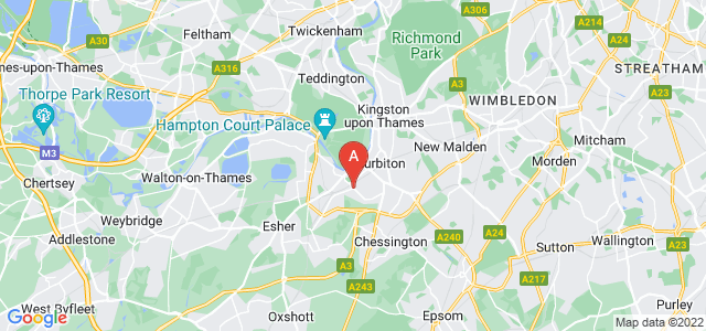 Google static map for Long Ditton