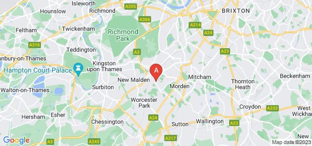 Google static map for Merton